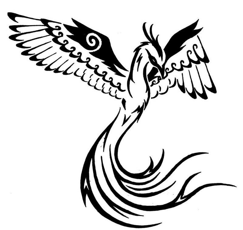 800x758 Phoenix Bird Coloring Pages