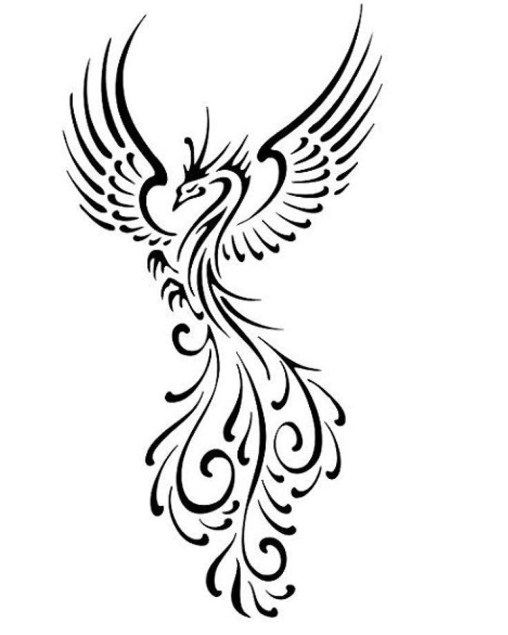 Phoenix Line Drawing