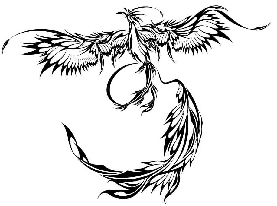 916x683 Collection Of Tribal Phoenix Tat Design
