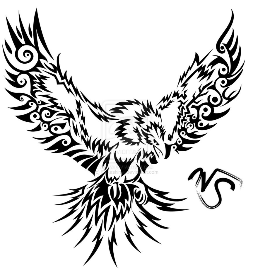 864x924 Drawn Eagle Phoenix Bird