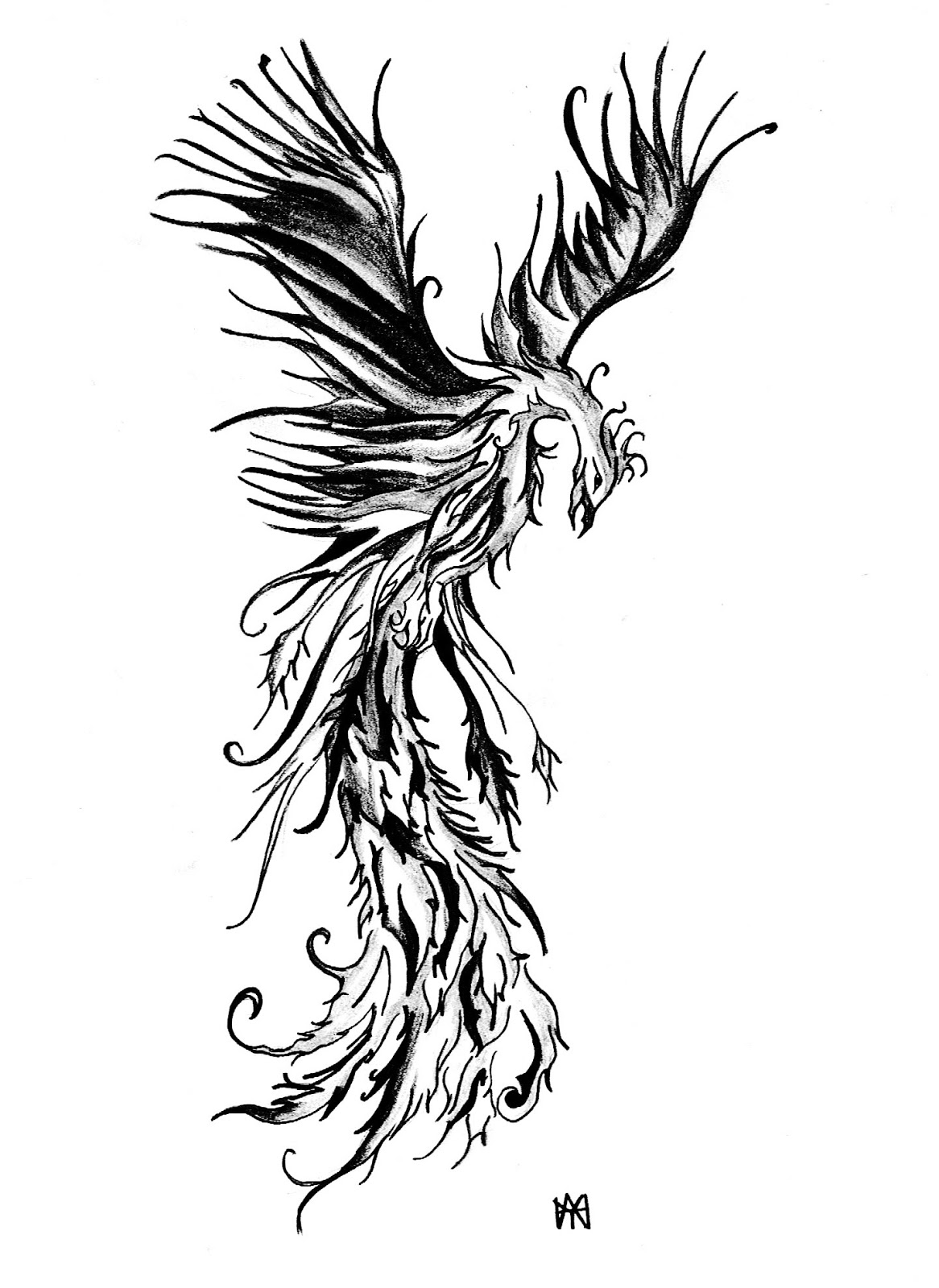 1166x1600 Phoenix Tribal Outline Tattoo Design Photo