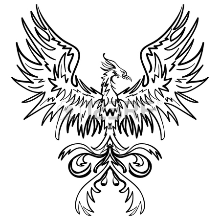 450x450 Sketch Phoenix Images Amp Stock Pictures. Royalty Free Sketch