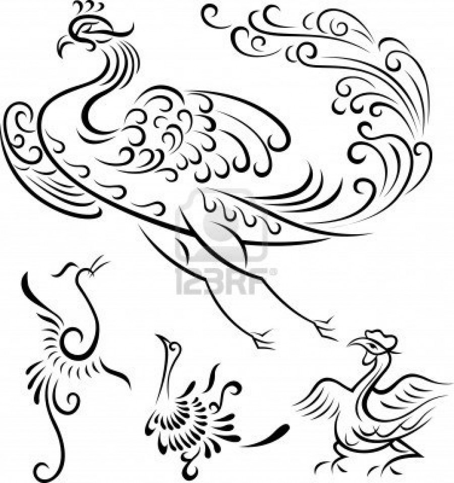 900x957 Tribal Peacock Phoenix Bird Outline Tattoos