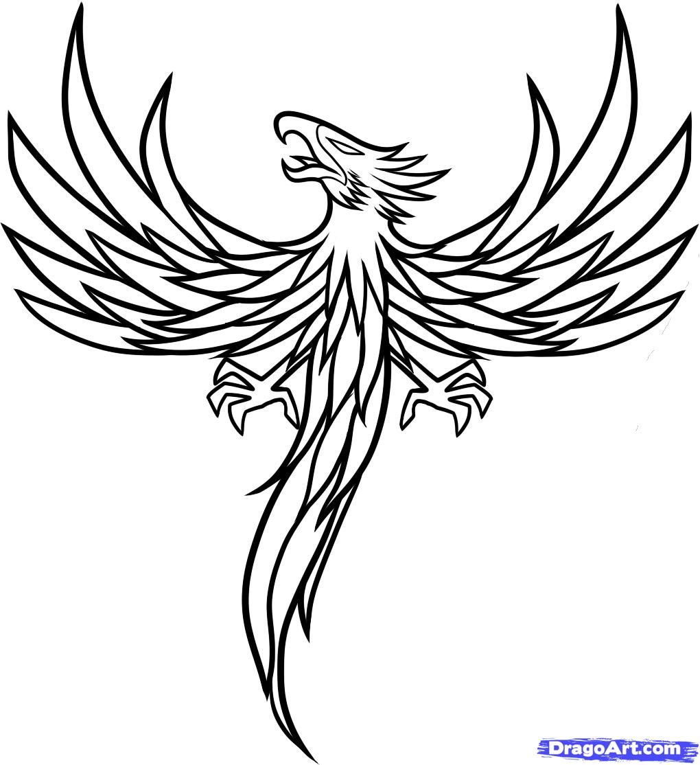 1020x1114 Outline Phoenix Tattoo Design Black Outline Phoenix Tattoo Design