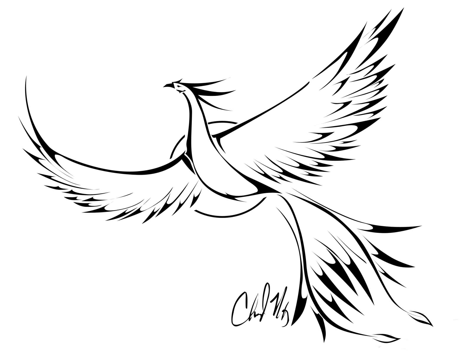 1600x1200 Black Outline Flying Phoenix Tattoo Stencil By Cheryl Maxey