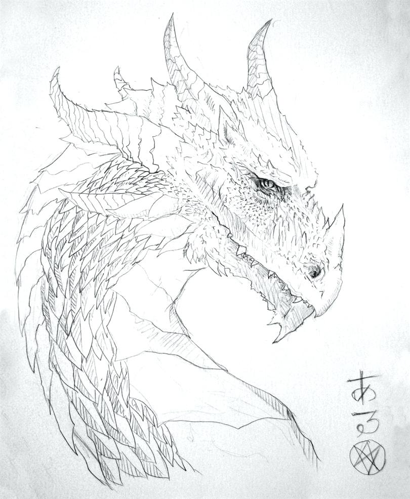 Phoenix Pencil Drawing at GetDrawings.com | Free for personal use ...