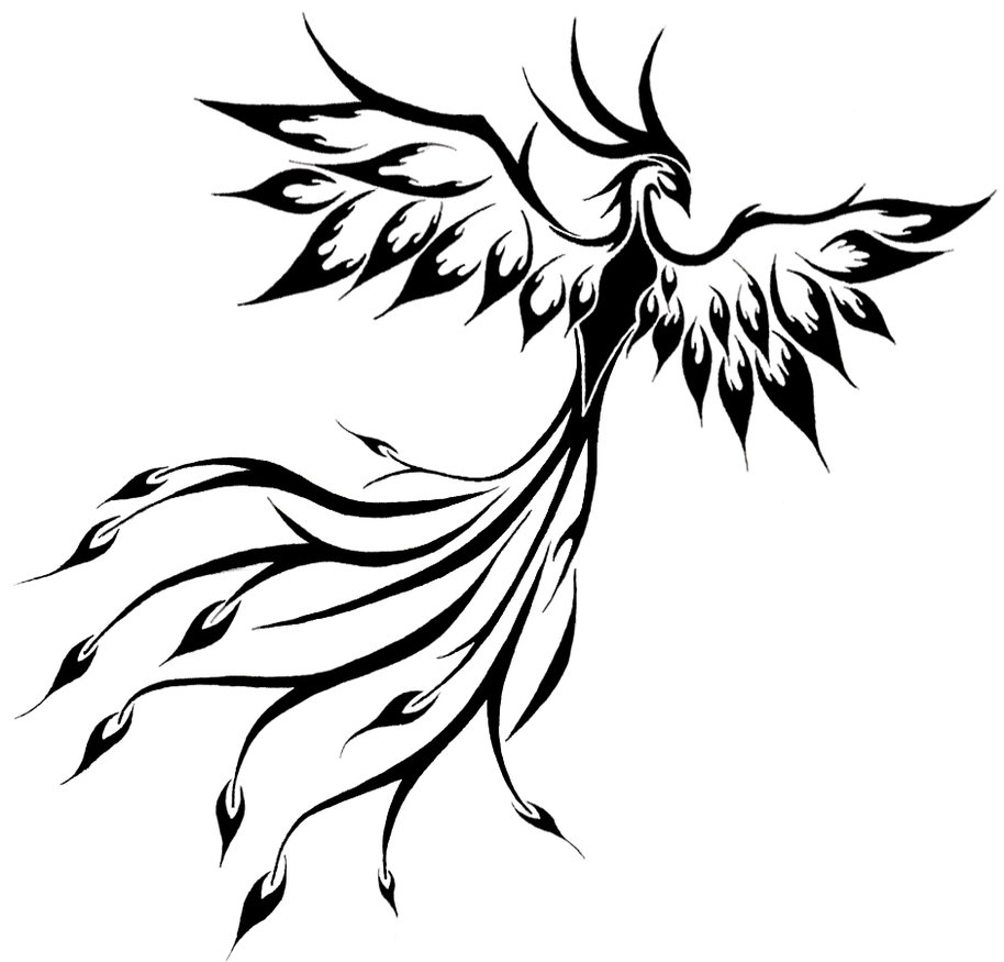 Phoenix Wings Drawing