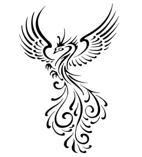 Phoenix Wings Drawing At Getdrawings Free For Personal Use
