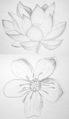 236x407 How To Draw Flowers