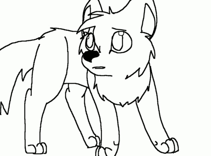 736x544 Coloring Pages Appealing How To Draw Wolf Pups Drawings Sketch