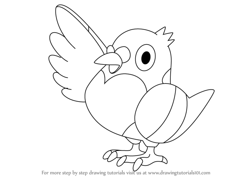 800x566 Learn How To Draw Pidove From Pokemon (Pokemon) Step By Step