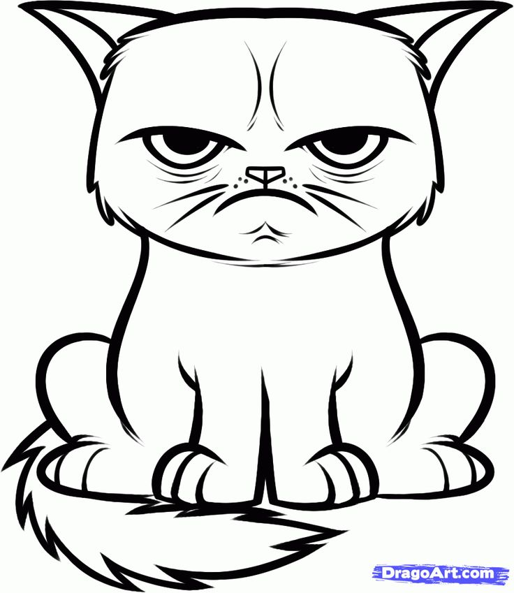 736x849 Drawn Cat Line