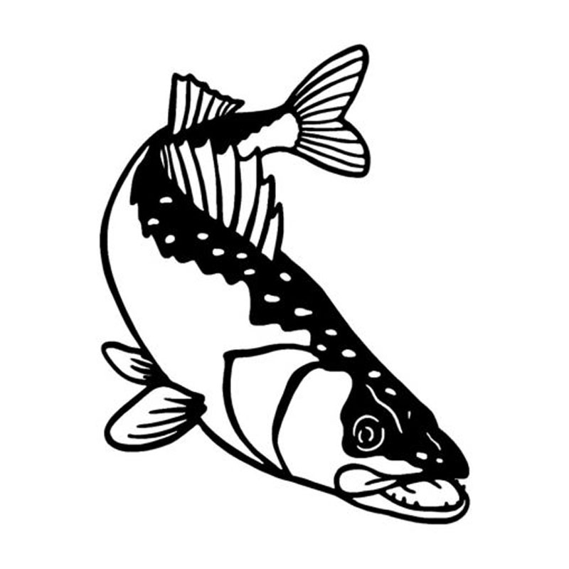 800x800 Buy Walleye Sticker And Get Free Shipping