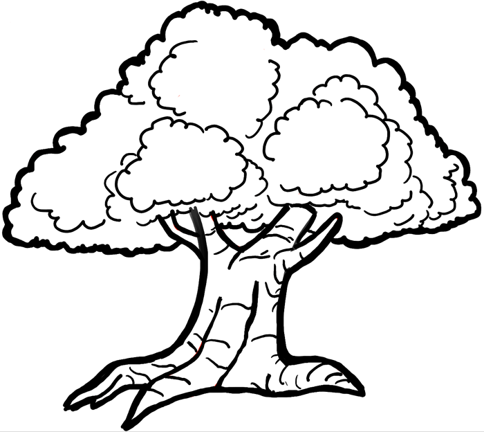 700x624 How To Draw Cartoon Trees With Easy Step By Step Drawing Tutorial