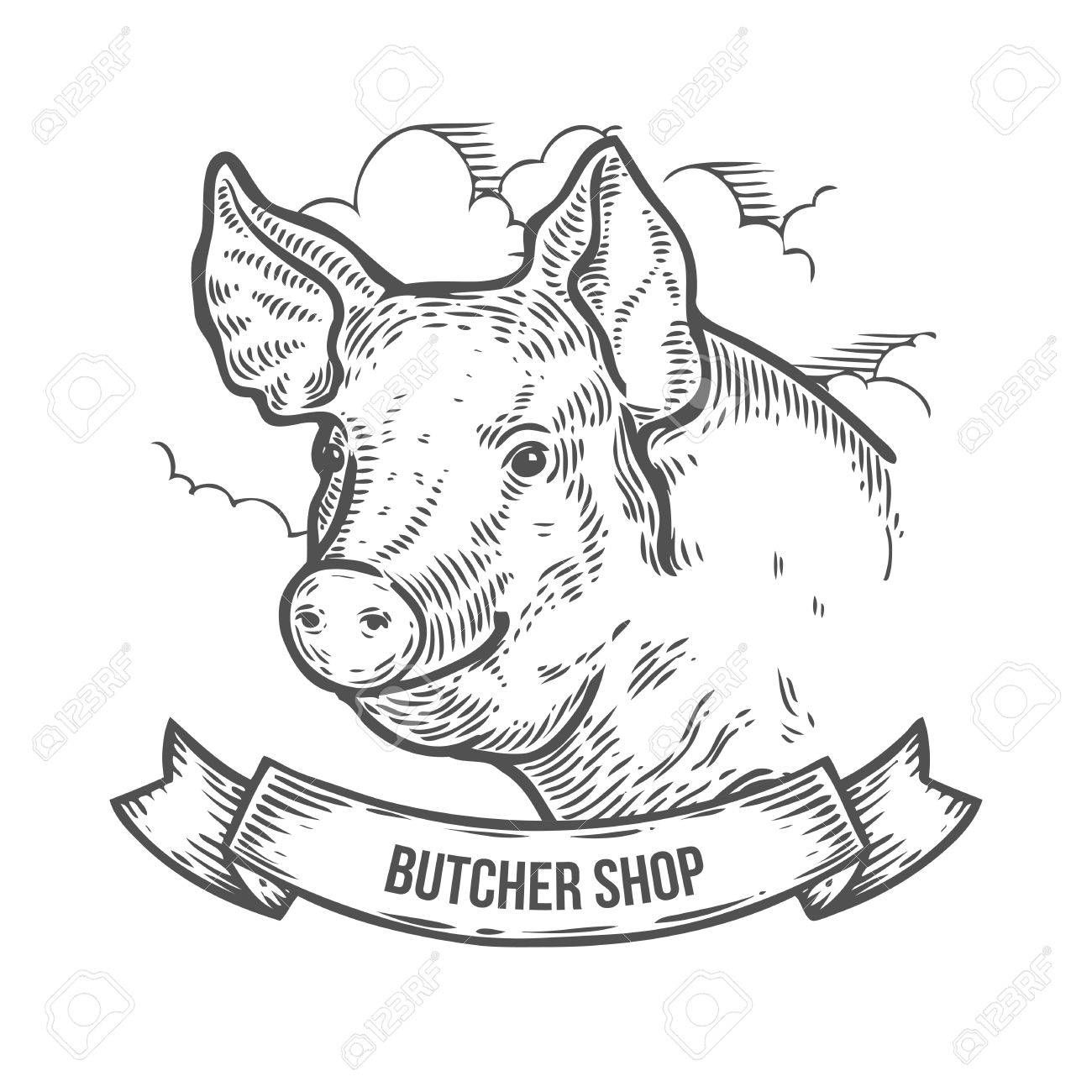 1300x1300 Pig Head Butcher Shop. Hand Drawn Sketch In A Graphic Style