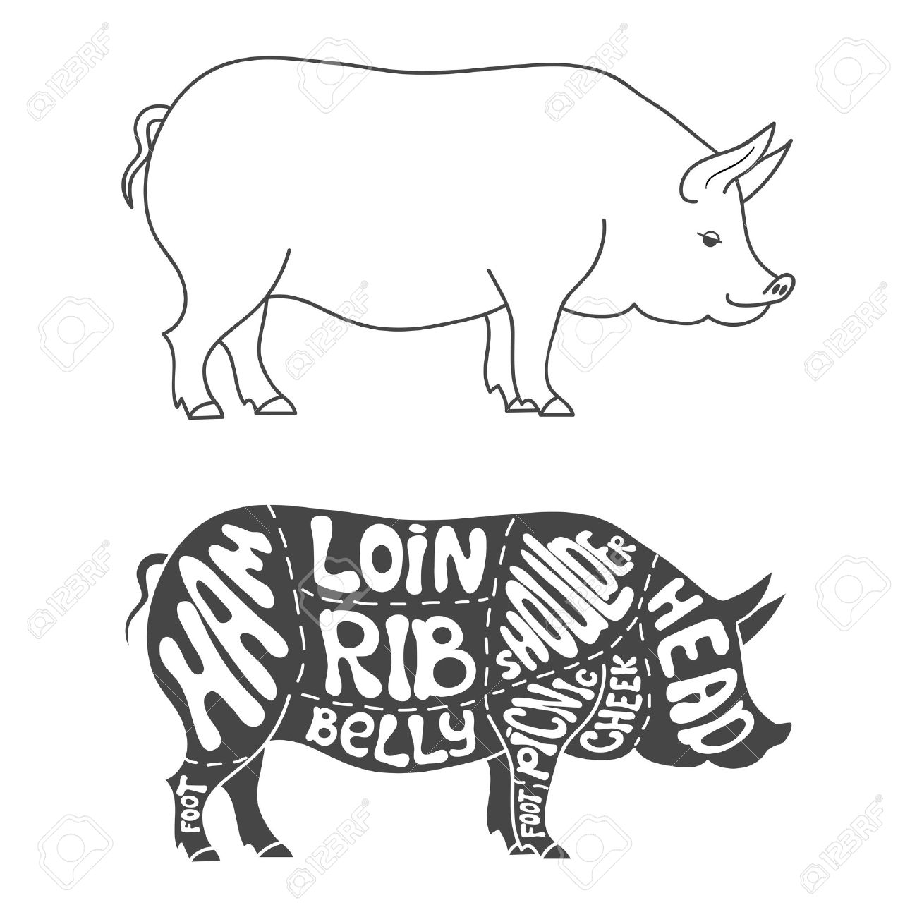 1300x1300 Pork Cuts Diagram. Hand Drawn Butcher Cuts Scheme Royalty Free