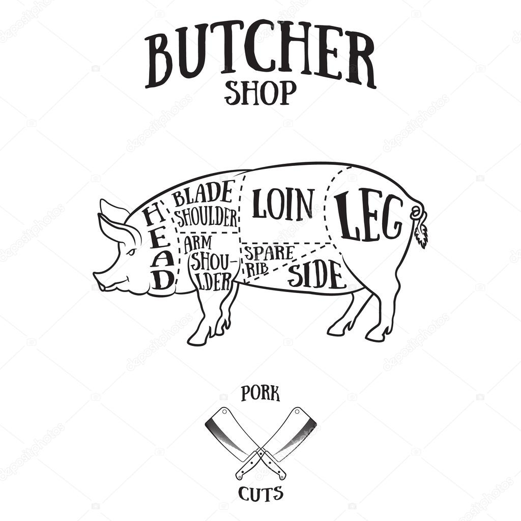 1024x1024 Butcher Cuts Scheme Of Pork Stock Vector Klauskunstler