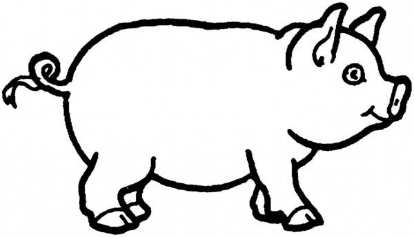 600x344 How To Draw A Pig Coloring Page Coloring Sky