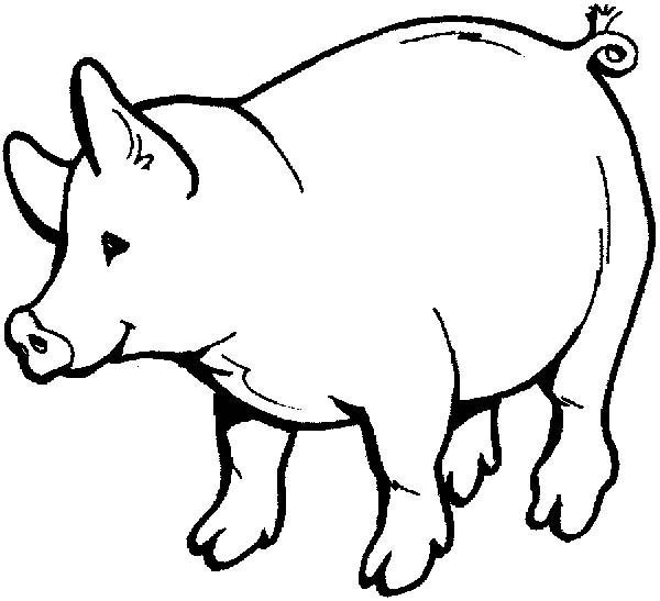 600x547 Pig Drawings For Kids Coloring Page Pig Drawings For Kids