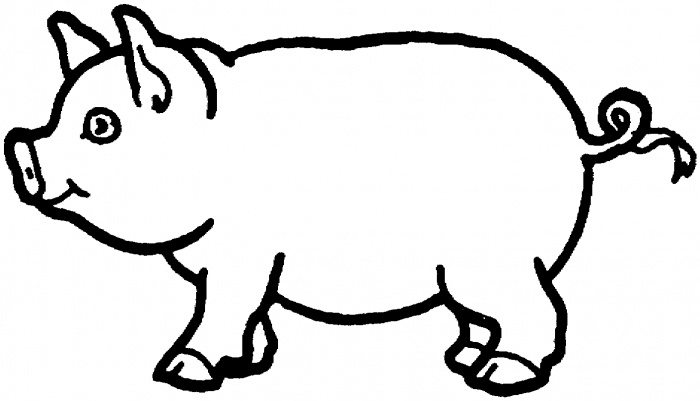 Pig drawing for kids at getdrawings free for personal use pig 700x401 pig colouring page or finger paint with chocolate pudding maxwellsz
