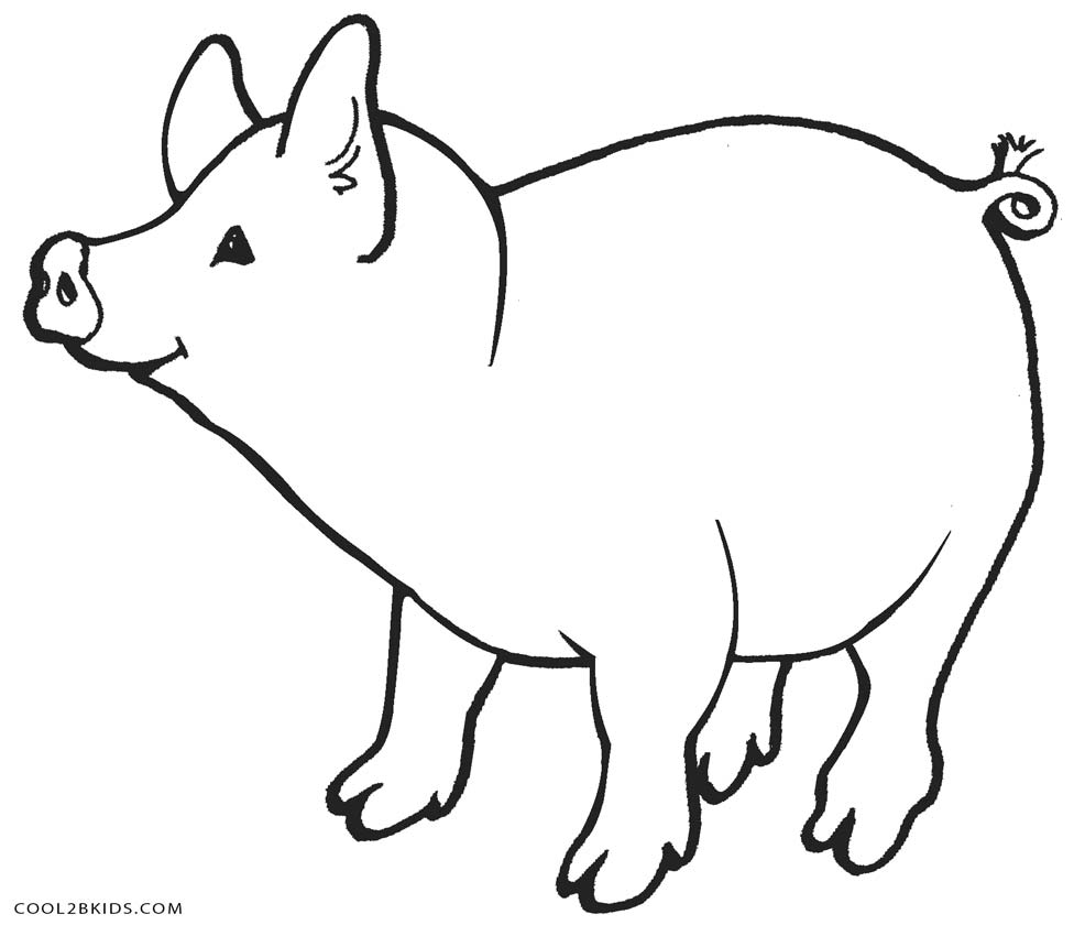 986x850 Superior Pig Coloring Pages Free Printable For Kids Cool2bkids