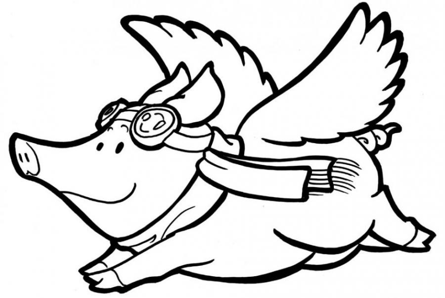 900x602 When Pigs Fly. Nature. Drawings. Pictures. Drawings Ideas For Kids