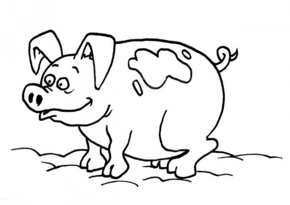 940x666 Easy Pig Drawing 483852