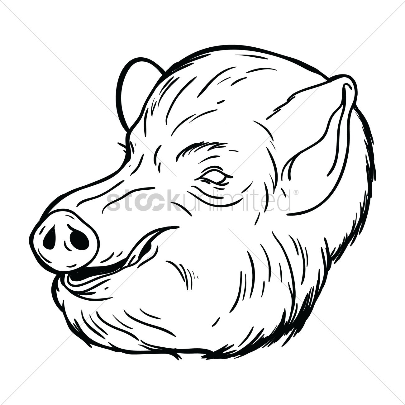 1300x1300 Free Pig Face Vector Image