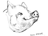 200x150 Pigs Images Pig Drawings Photo (1078512)