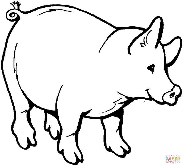 Line Drawing Of A Pig Face : Pig outline drawing at getdrawings free for personal
