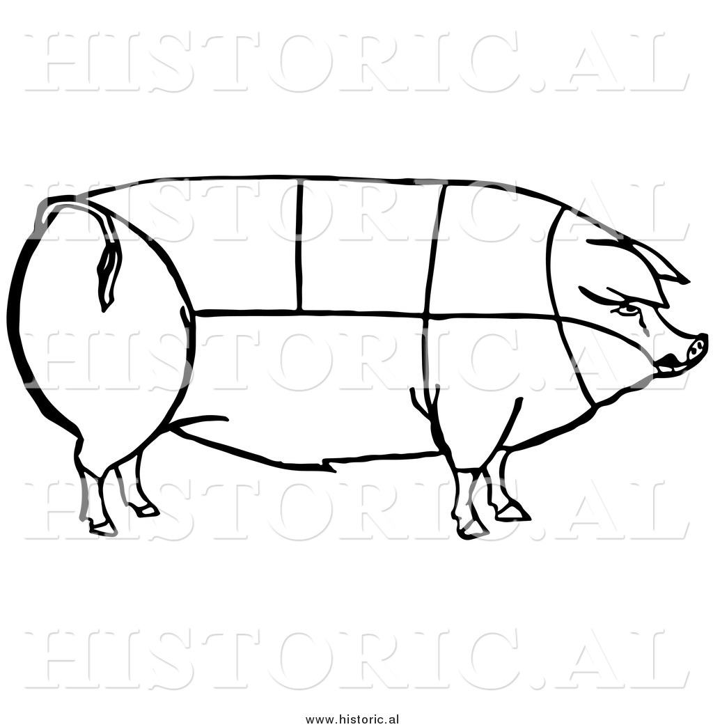 1024x1044 Clipart Of A Pig With Outlined Cuts Of Pork Chart