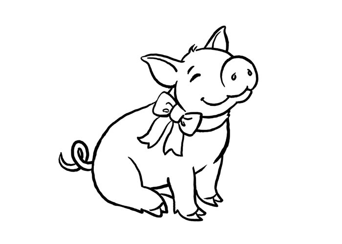 Pig Outline Drawing
