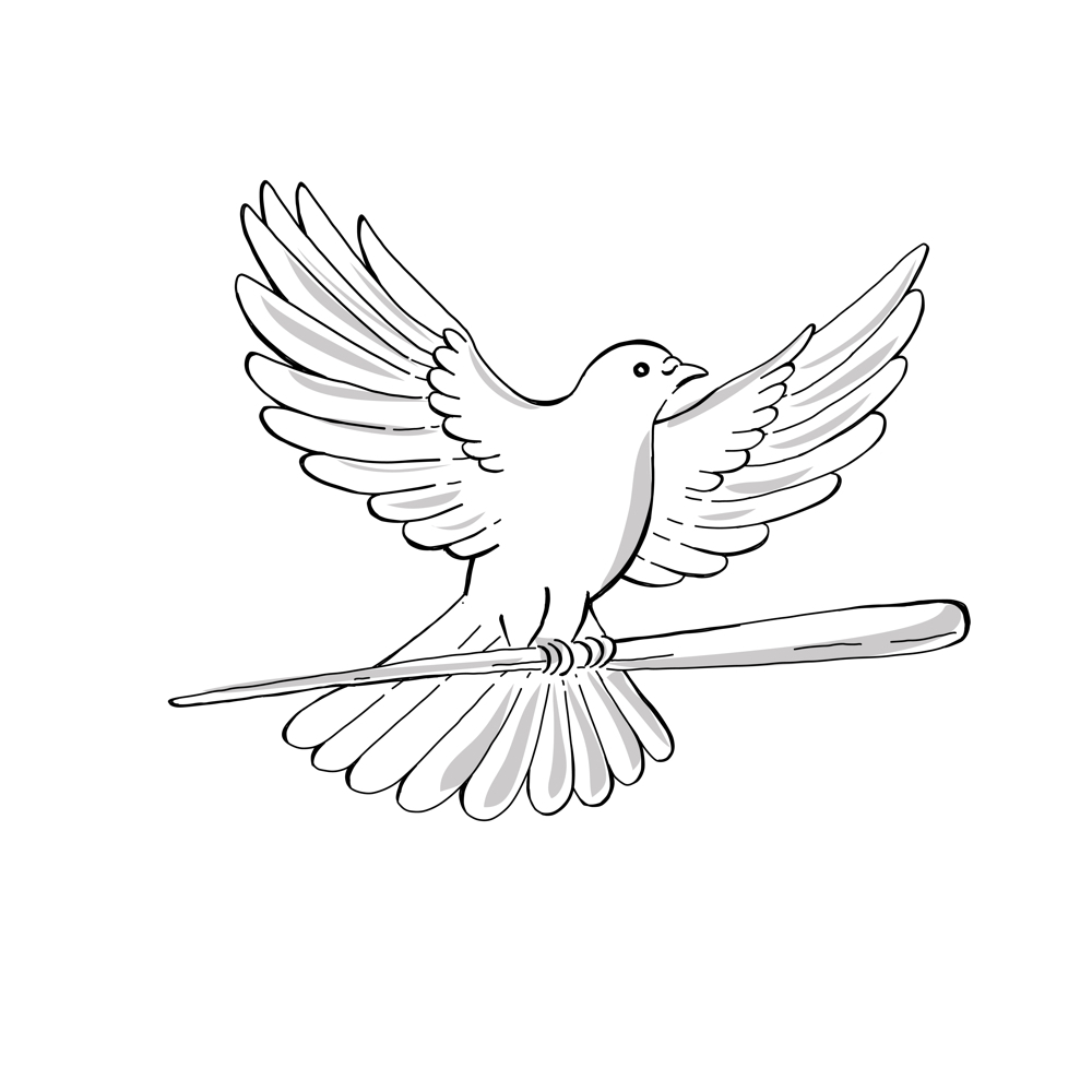 1000x1000 Pigeon Or Dove Flying With Cane Drawing On Behance