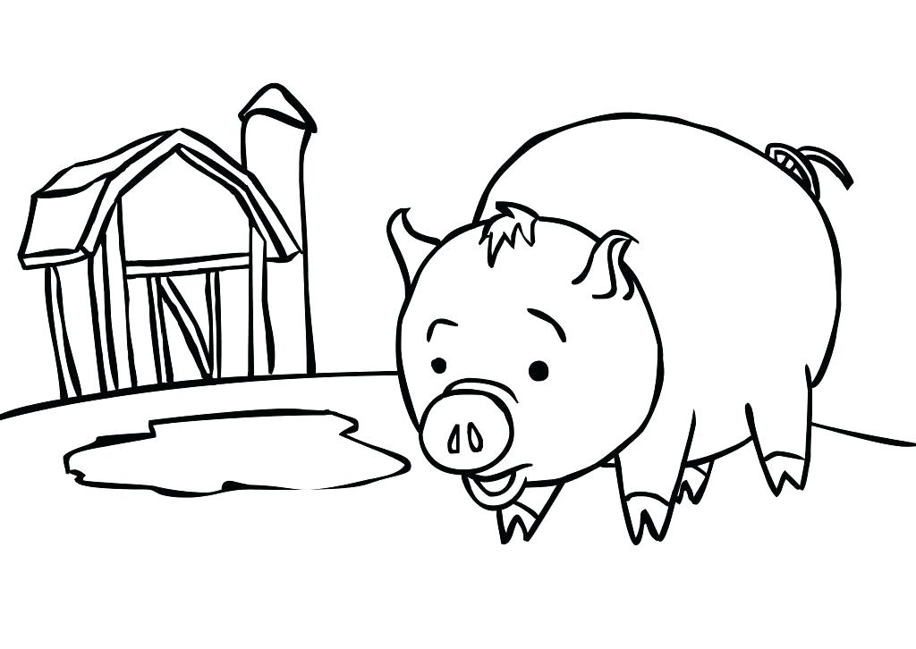 1024x726 Coloring Pages Of Pigs Animal Baby Pig Page Kids Art Guinea C