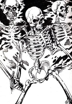 299x429 Skeleton Titannica Fandom Powered By Wikia