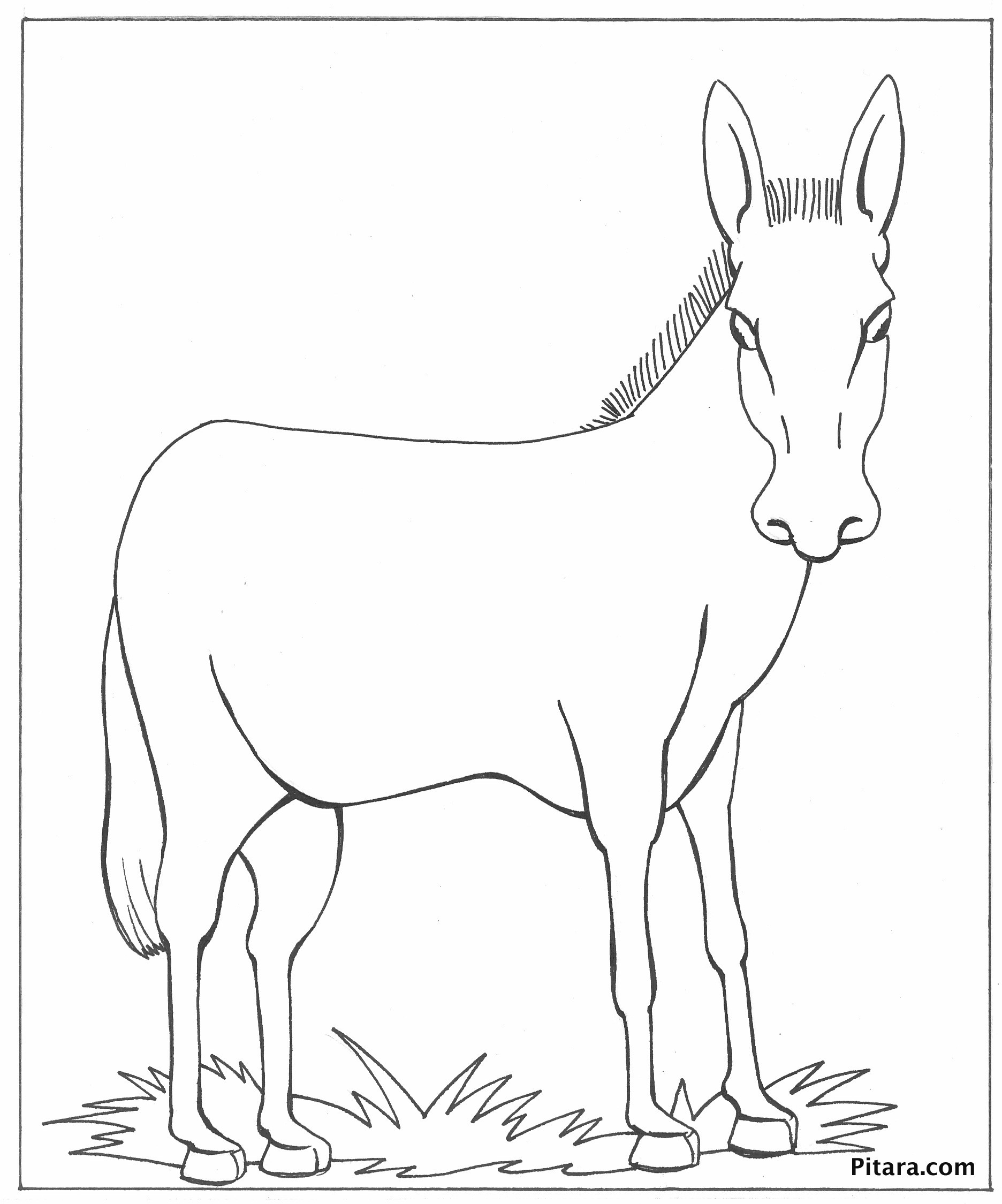 Pin The Tail On The Donkey Drawing at GetDrawings.com | Free for ...