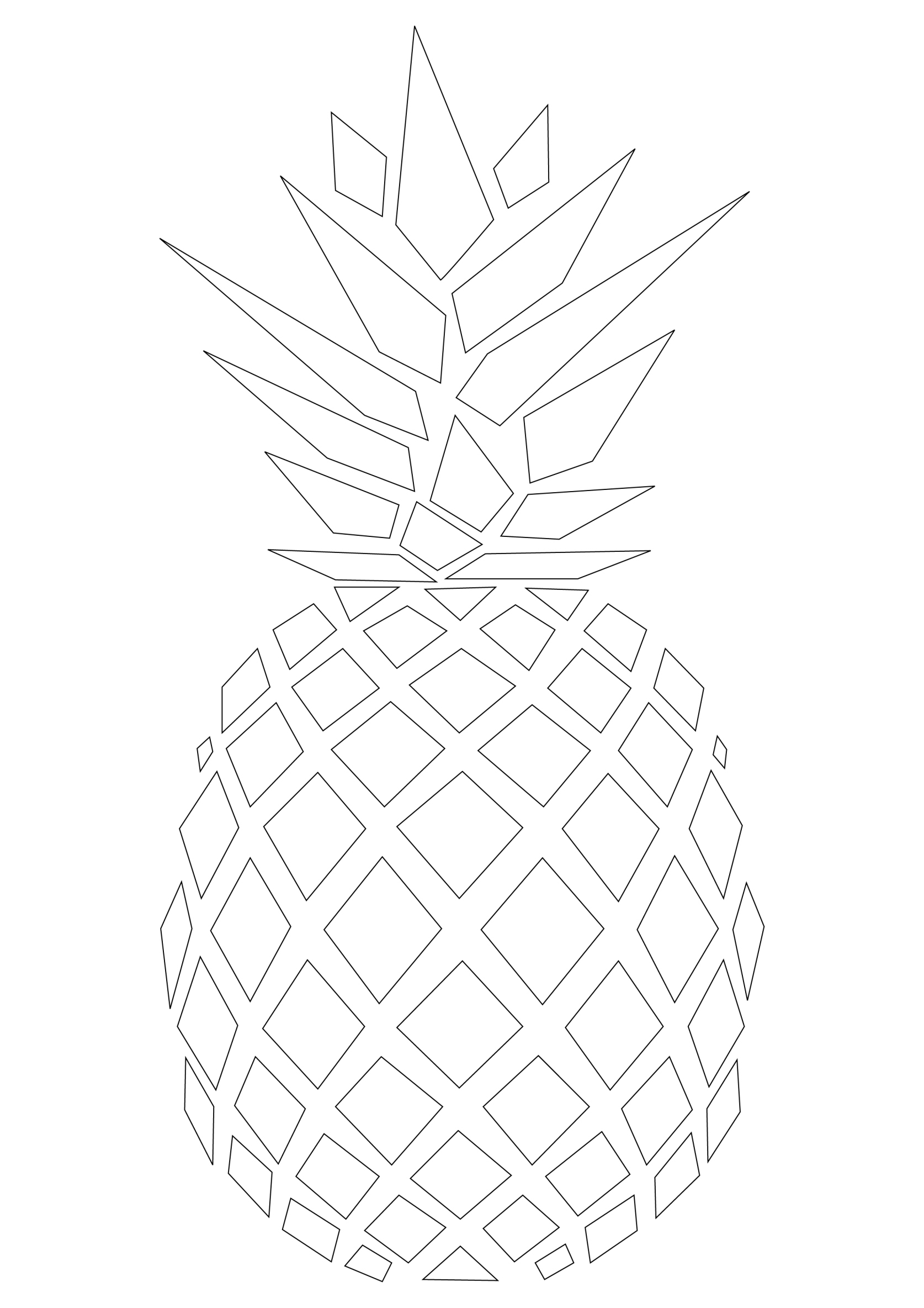 Pine Apple Drawing