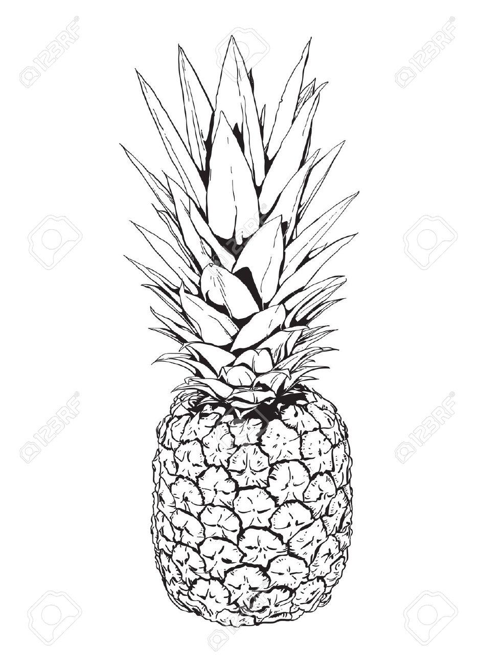 935x1300 Pineapple Art Black And White Black And White Illustration Aloha