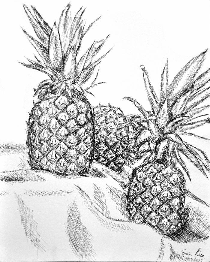700x873 Pineapple Crosshatch By Hikari Dareigan