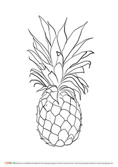 236x333 Pineapple Drawing Related Keywords Amp Suggestions