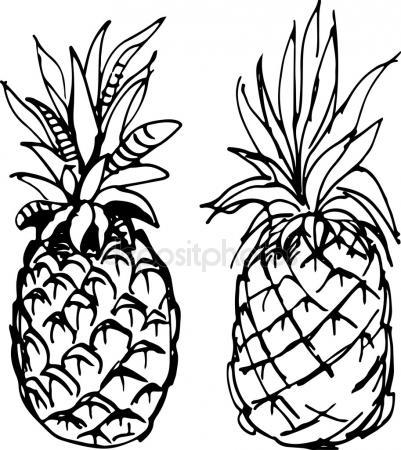 401x450 Pineapple. Vector Drawing Stock Vector Marinka