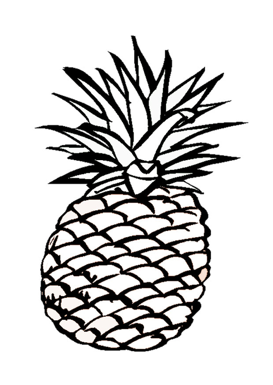 531x750 Coloring Page Pineapple