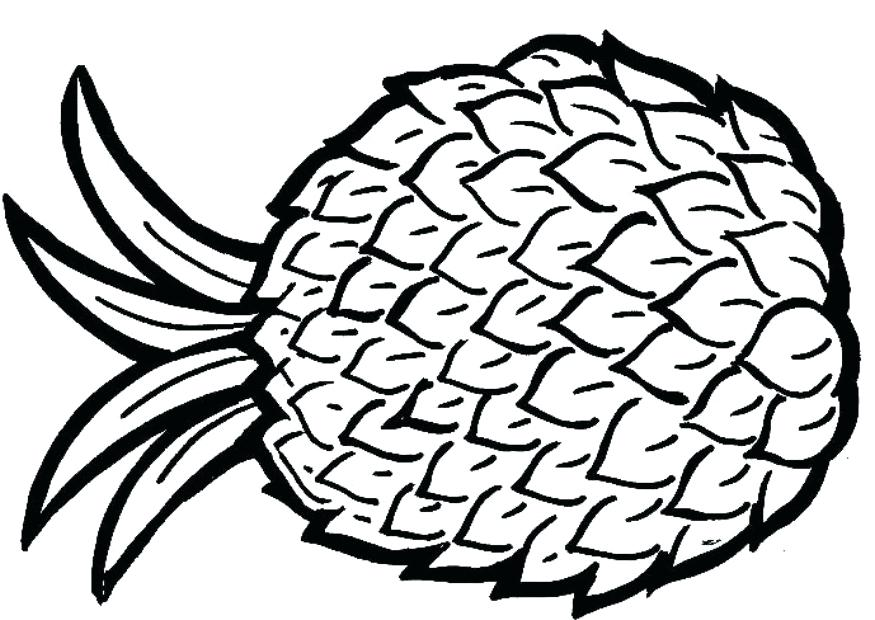 875x620 Complete Pineapple Coloring Page Fee Pages My Writing With Fire