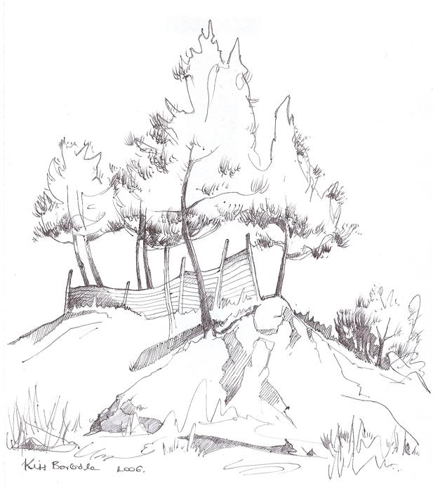 617x693 Pine Trees