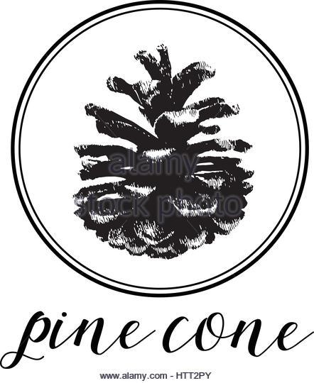 442x540 Pinecone Silhouette Vector Stock Photos Amp Pinecone Silhouette