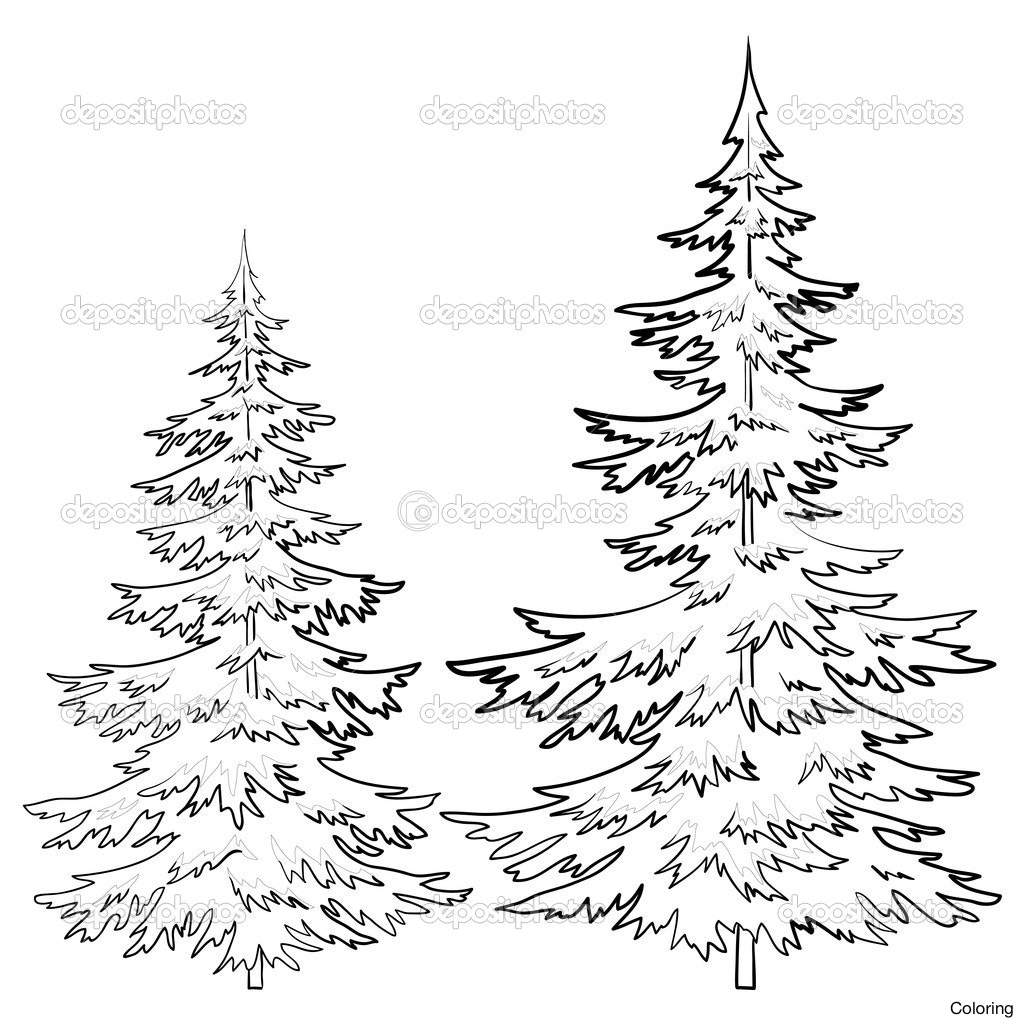 1024x1024 Drawn Pine Tree 15 X Ms Bmp Drawings Coloring Pin Fir Line Drawing