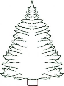 223x302 How To Draw How To Draw A Pine Tree