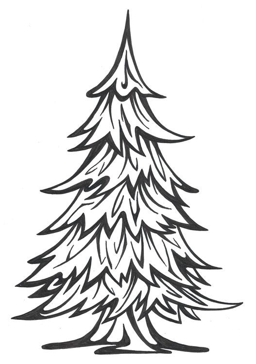 527x750 Simple Pine A.e.g. Artistry