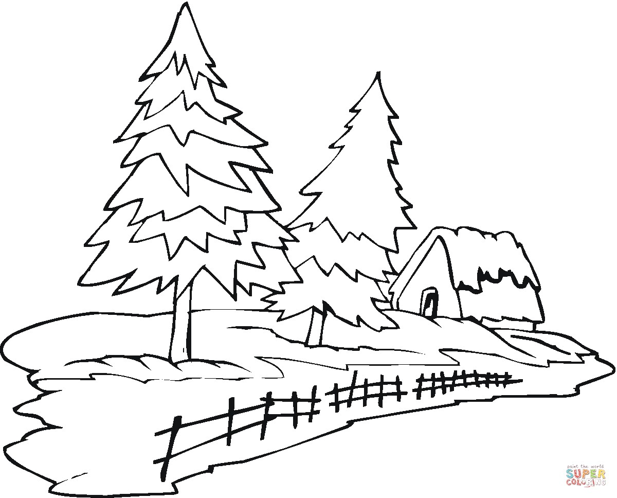 1200x968 Coloring Pages Evergreen Trees Best Of Pine Tree In The Christmas