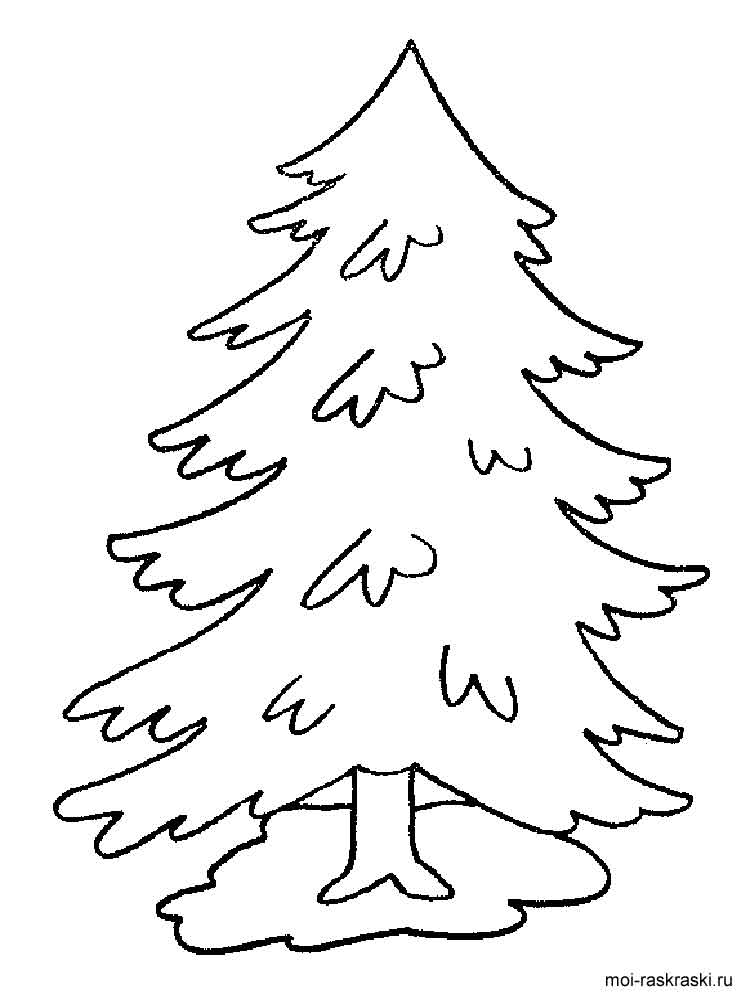 750x1000 Fir Tree Coloring Pages For Kids. Free Printable Fir Tree Coloring
